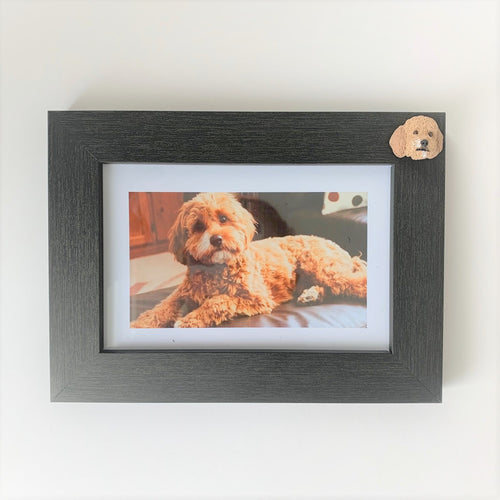 Custom pet memorial photo frame of a cavoodle dog
