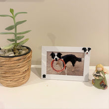 Pet memorial photo frame shown of a border collie dog