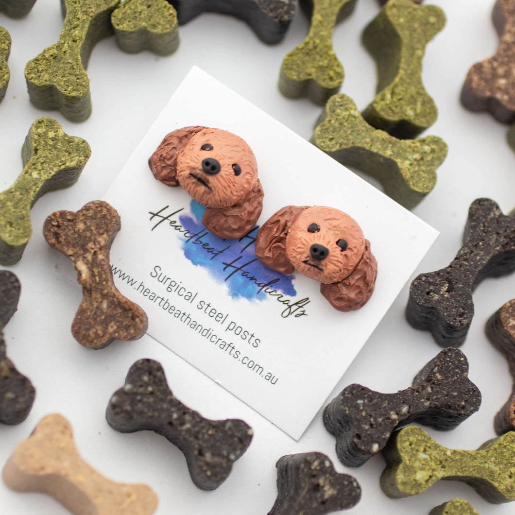 Handmade polymer clay Cavoodle stud earrings shown surrounded by bone dog treats