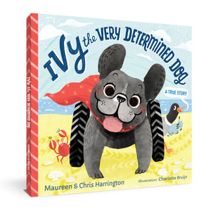 Ivy the Very Determined Dog (Hardcover)