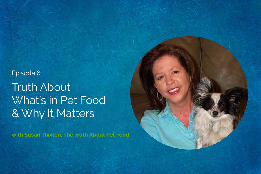 The Truth About What's in Pet Food & Why It Matters with Susan Thixton from the Truth About Pet Food