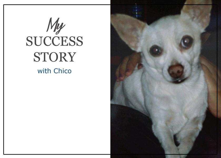 Success Story: Chico