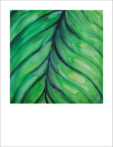 limited edition print of Tropical Leaf, a watercolor + gouache painting by Jane Nicolo