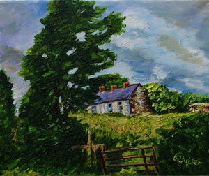 Summer Silence, Deserted Cottages, Rural Downpatrick, County Down