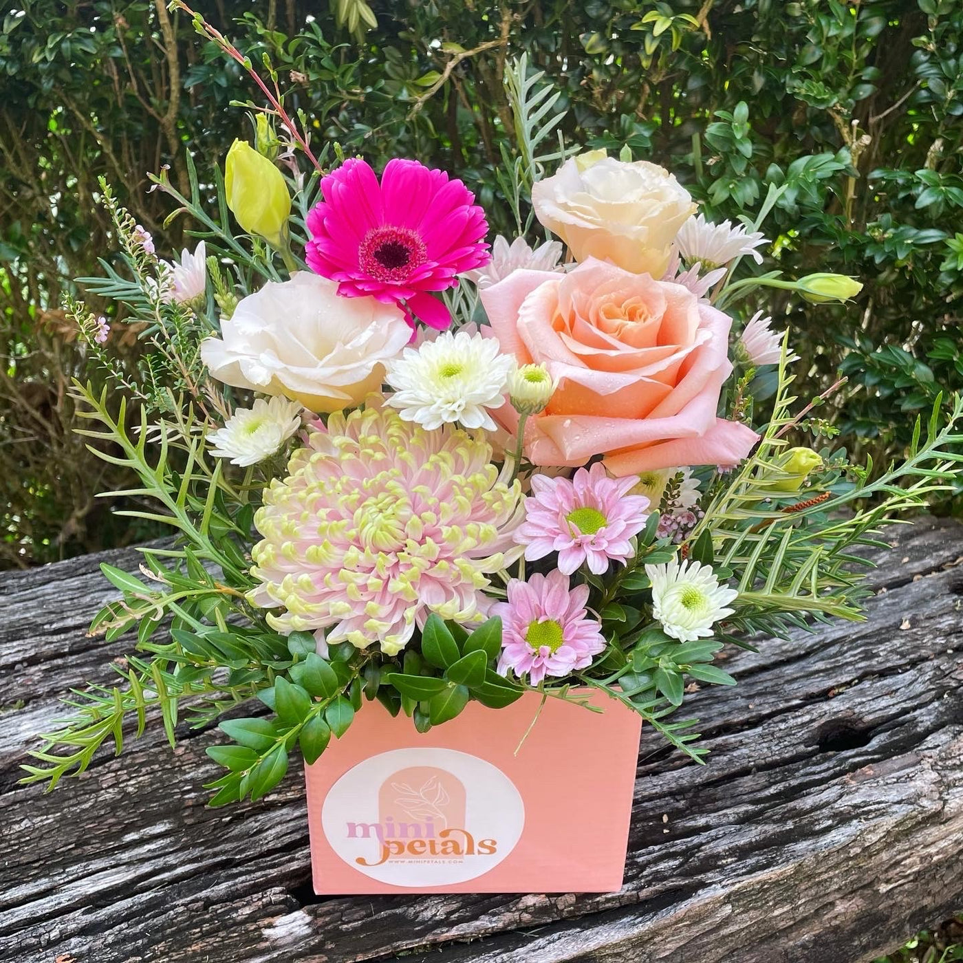 Protea Sunrise Dried Arrangement