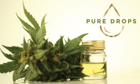 CBD products derived from hemp
