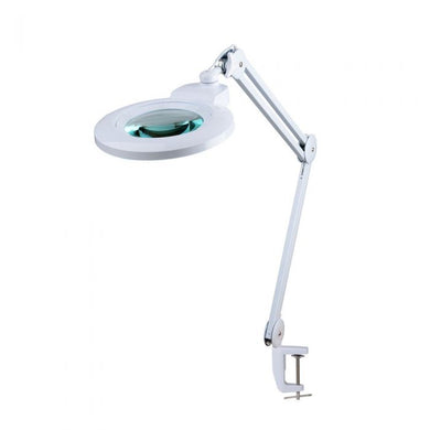 MAGNIFYING LAMP WITH INTERCHANGEABLE LENS/  DIMMER LIGHTS