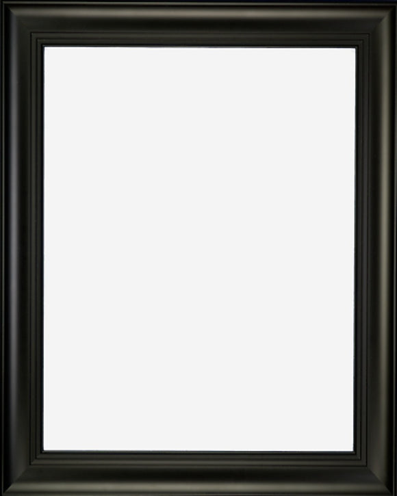 Designer Black Finish with Triple Step Lip Picture Frame, 2 3/4
