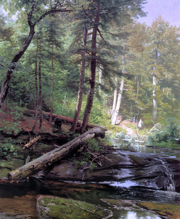 Herman Herzog A Bear Approaching a Forest Stream - Canvas Art Print
