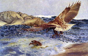 Bruno Liljefors A Sea Eagle Chasing Eider Duck - Canvas Art Print