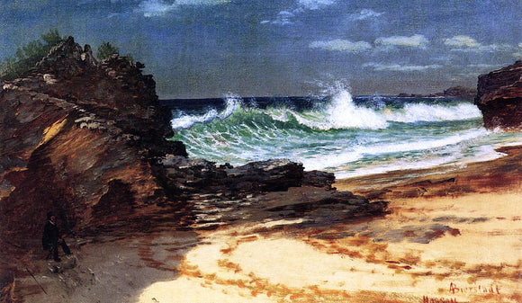 Albert Bierstadt A Beach at Nassau - Canvas Art Print