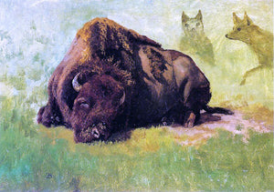 Albert Bierstadt Bison with Coyotes in the Background - Canvas Art Print