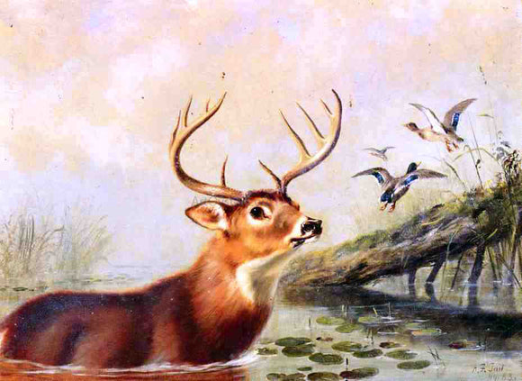 Arthur Fitzwilliam Tait Buck in a Marsh - Canvas Art Print