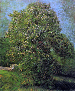 Vincent Van Gogh Chestnut Tree in Bloom - Canvas Art Print