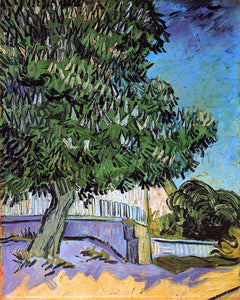 Vincent Van Gogh Chestnut Trees in Bloom - Canvas Art Print