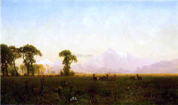 Albert Bierstadt Deer Grazing, Grand Tetons, Wyoming - Canvas Art Print