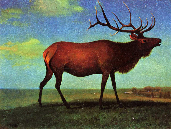Albert Bierstadt Elk - Canvas Art Print