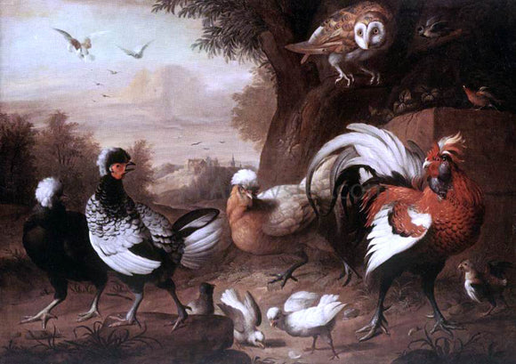 Jakab Bogdany Fowls and Owl - Canvas Art Print