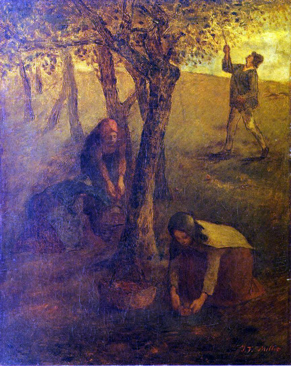 Jean-Francois Millet Gathering Apples - Canvas Art Print