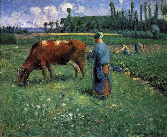Camille Pissarro A Girl Tending a Cow in a Pasture - Canvas Art Print