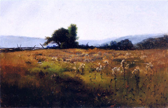 Willard Leroy Metcalf Mountain View from High Field - Canvas Art Print