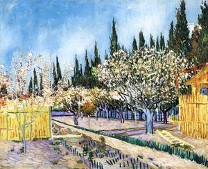 Vincent Van Gogh Orchard Surrounded by Cypresses - Canvas Art Print