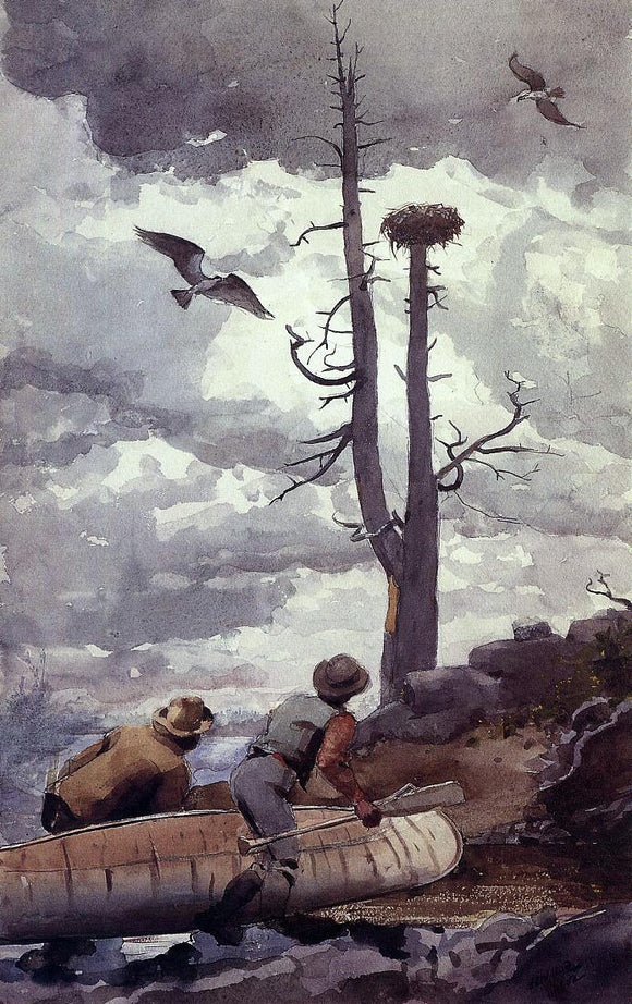 Winslow Homer Osprey's Nest - Canvas Art Print