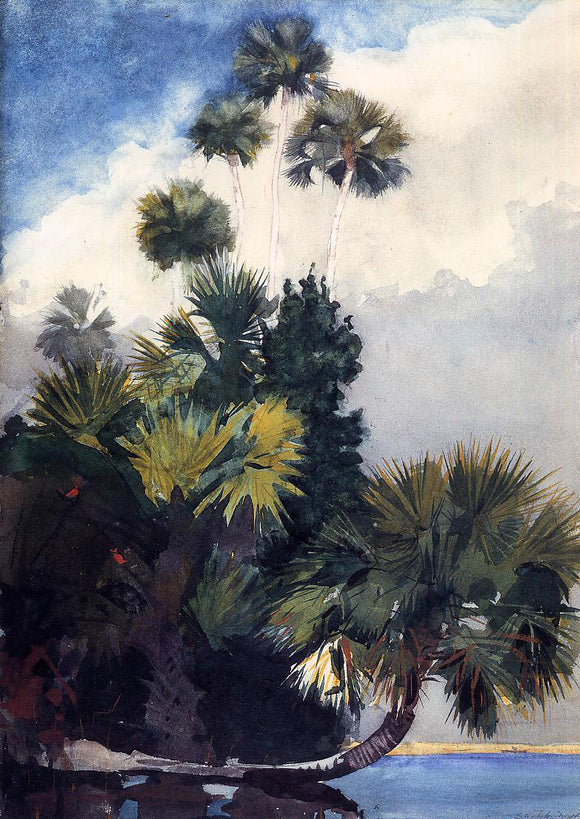 Winslow Homer Palm Trees, Florida - Canvas Art Print