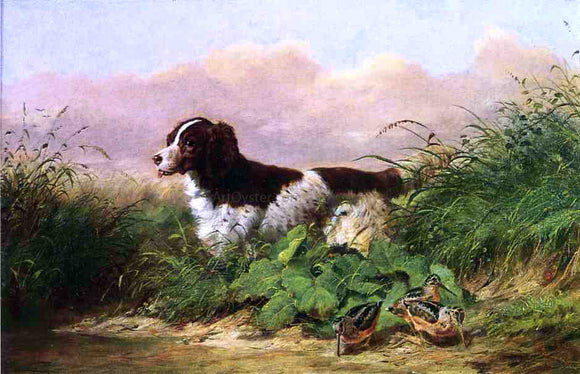 Arthur Fitzwilliam Tait Setter and Woodcock - Canvas Art Print