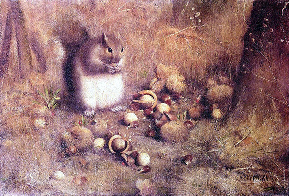 Joseph Decker A Squirrel with Nuts - Canvas Art Print