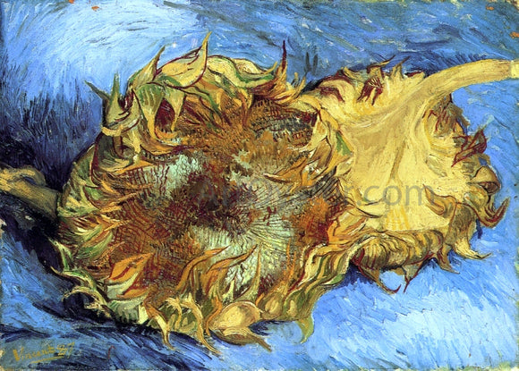 Vincent Van Gogh Still Life with Two Sunflowers - Canvas Art Print