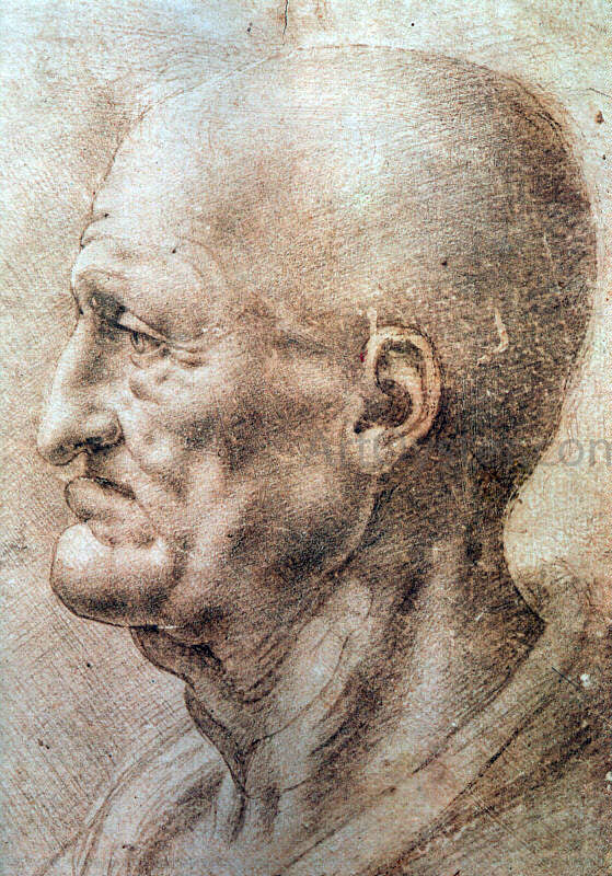 Leonardo Da Vinci Study of an Old Man's Profile - Canvas Art Print