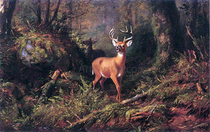 Arthur Fitzwilliam Tait Adirondacks - Canvas Art Print