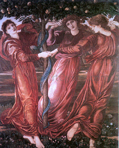 Sir Edward Burne-Jones The Garden of the Hesperides - Canvas Art Print