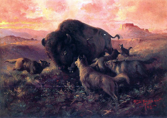 Frank Tenney Johnson The Wounded Buffalo - Canvas Art Print