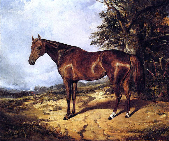 Arthur Fitzwilliam Tait Thoroughbred - Canvas Art Print
