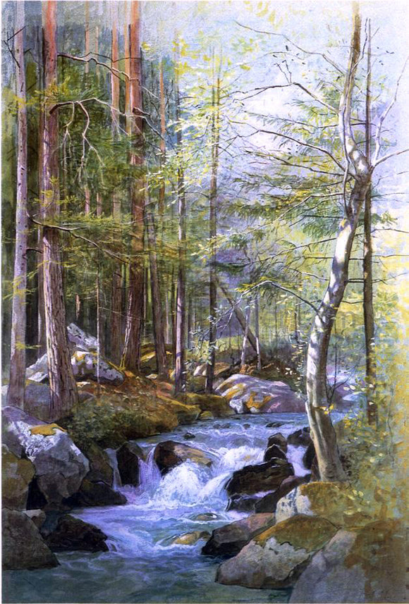 William Stanley Haseltine Torrent in Wood behind Mill Dam, Vahrn near Brixen, Tyrol - Canvas Art Print