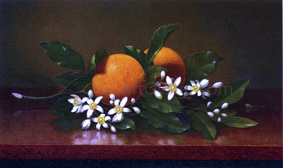 Martin Johnson Heade Two Oranges with Orange Blossoms - Canvas Art Print