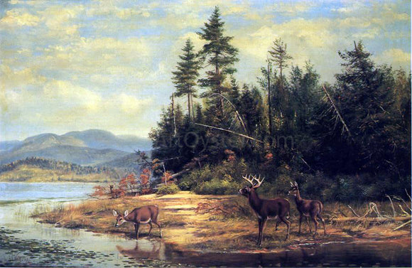 Arthur Fitzwilliam Tait View on Long Lake - Canvas Art Print