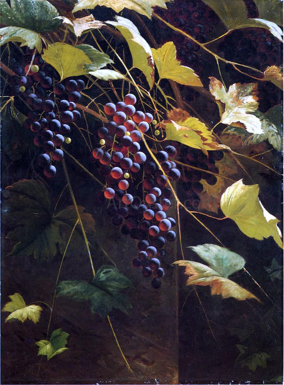 Andrew H. Way Wild Grapes - Canvas Art Print