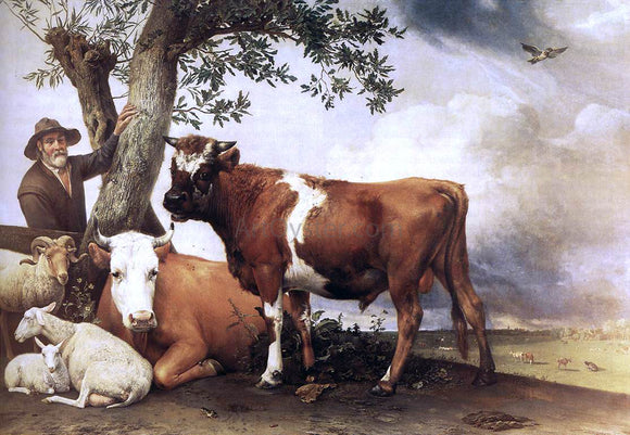 Paulus Potter Young Bull - Canvas Art Print