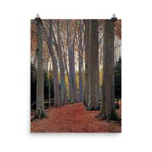 Load image into Gallery viewer, Santiago Rusiñol - Avenue of Plane Trees