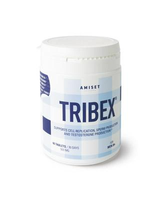 TRIBEX FOR MEN 28+ (60 DAGEN)