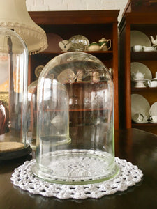 Antique Glass Dome. Victorian Glass Dome