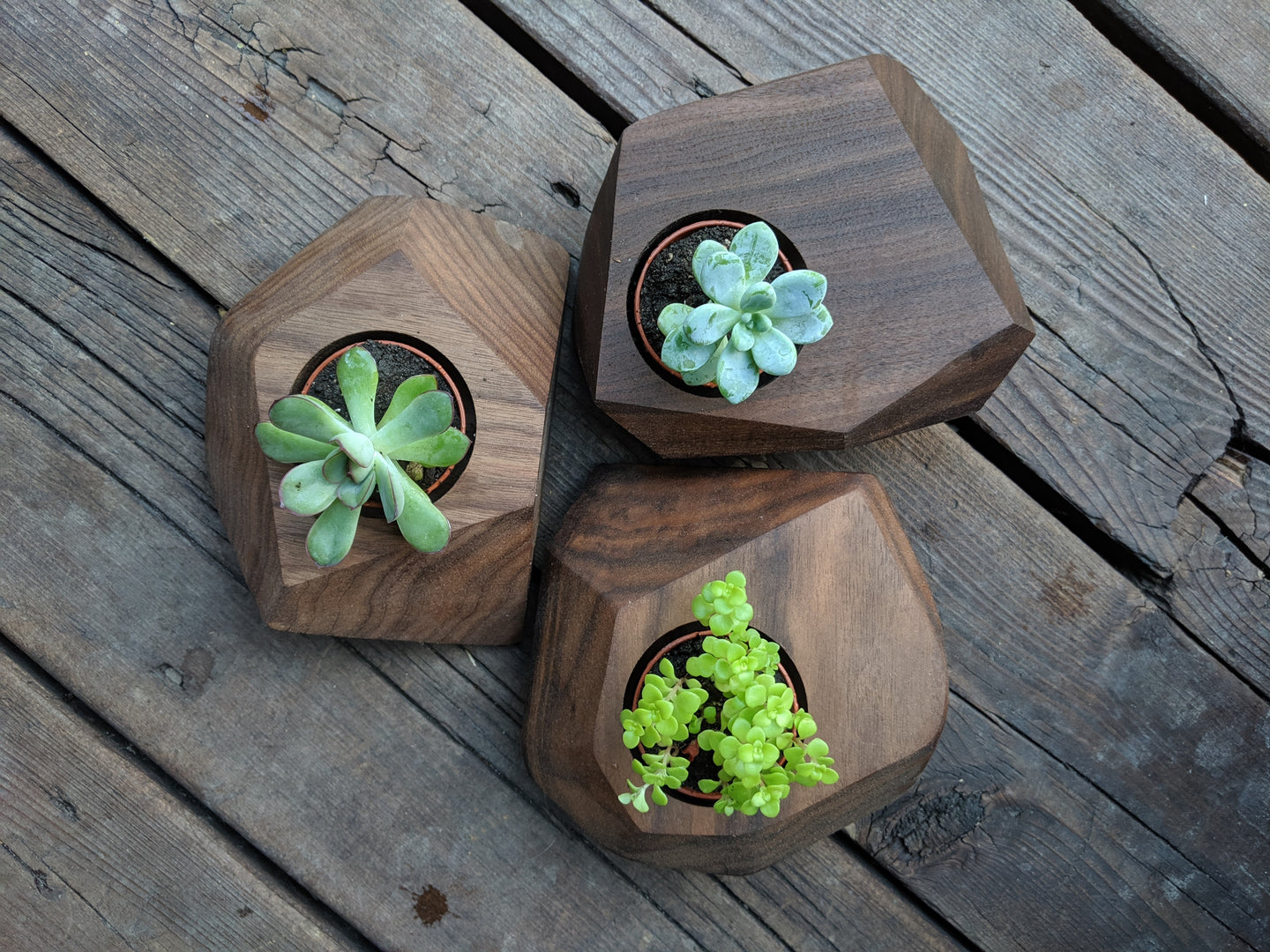 Faceted Succulent Pots