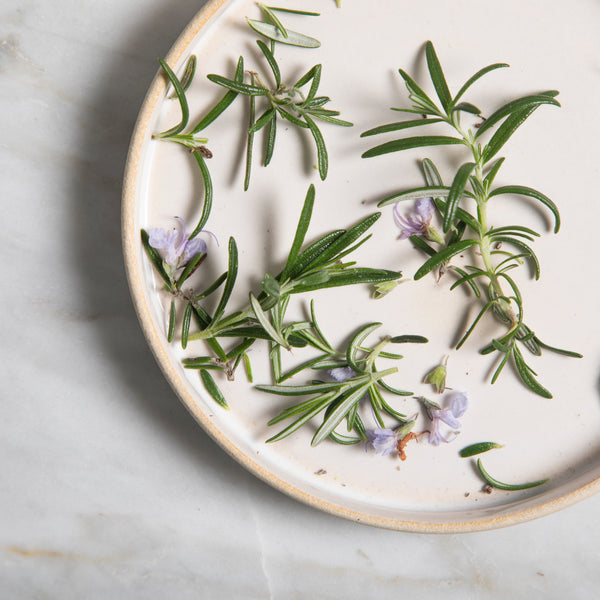 Why We Use Rosemary In Our Skincare