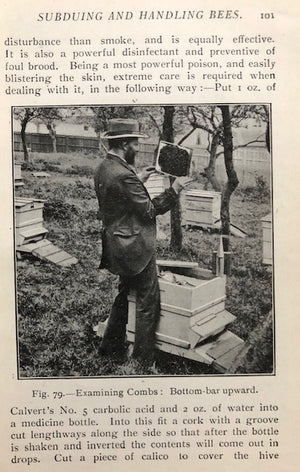 (Beekeeping) Cowan, T.W.  British Bee-Keeper's Guide Book to the Management of Bees in Movable-comb Hives, and the Use of Modern Bee-Appliances.