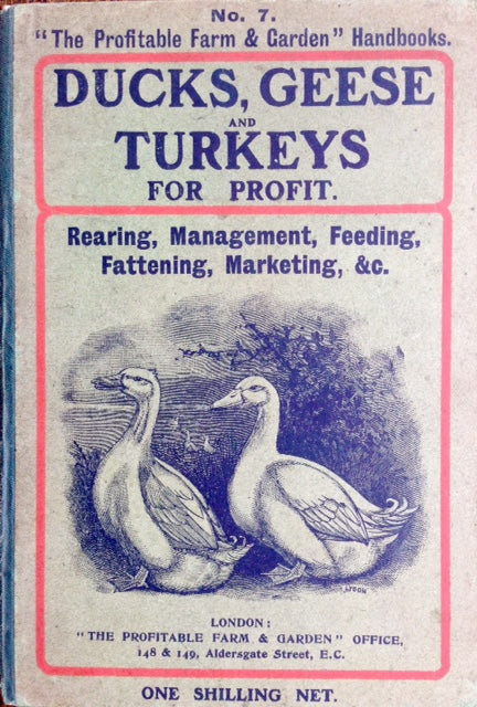 (Agriculture) Johnson, A. Tysilio. Ducks, Geese & Turkeys for Profit.