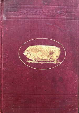 (Pigs) Coburn, F.D. Swine Husbandry: A Practical Manual for the Breeding, Rearing and Management of Swine.