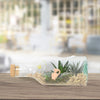 Succulent Garden in a Bottle